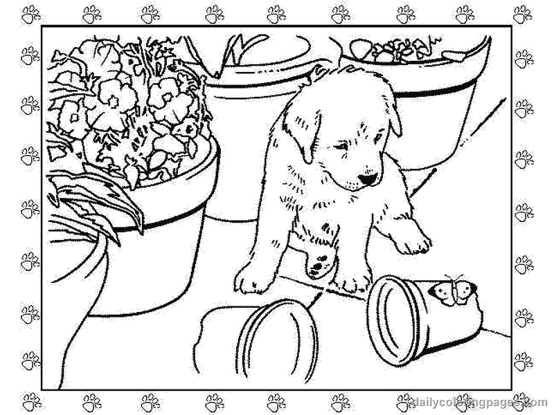 realistic puppy coloring pages realistic dogs drawing at getdrawings free download puppy realistic coloring pages