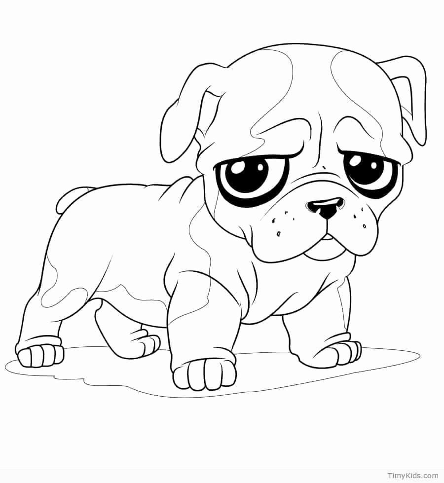 realistic puppy coloring pages realistic puppy drawing free download on clipartmag realistic pages puppy coloring