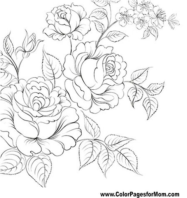 realistic rose flower coloring pages flor para colorear página 61 libros para colorear realistic coloring rose flower pages
