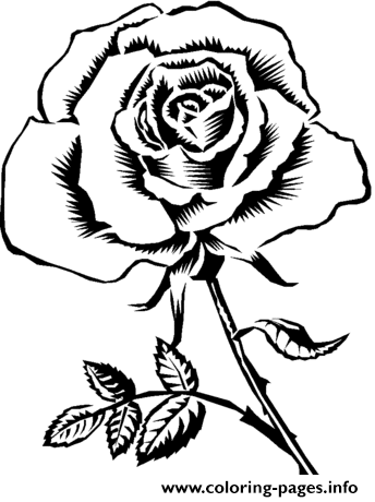 realistic rose flower coloring pages pretty rose realistic coloring pages printable flower realistic coloring rose pages