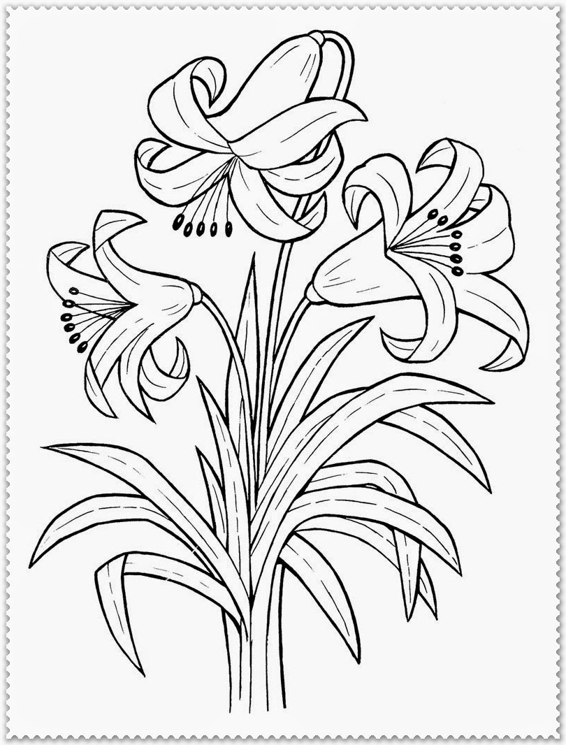 realistic rose flower coloring pages realistic flowers coloring pages print flower coloring flower coloring rose realistic pages