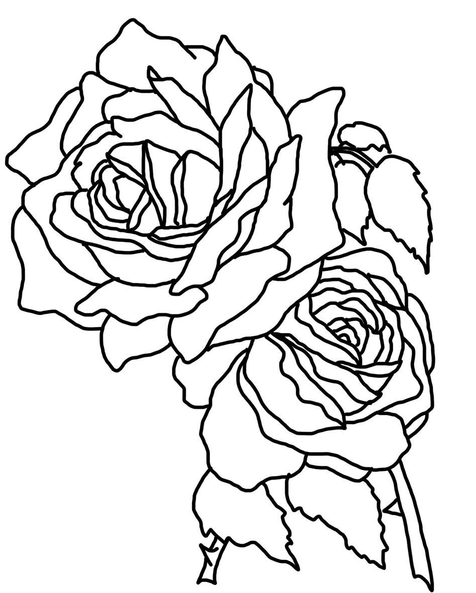 realistic rose flower coloring pages rose flower coloring page pages flower coloring rose realistic