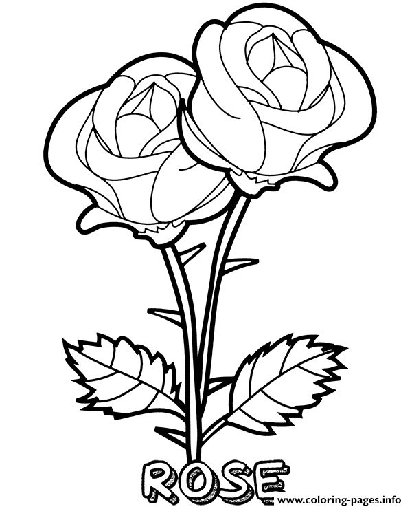 realistic rose flower coloring pages rose two flowers coloring pages printable pages flower realistic coloring rose