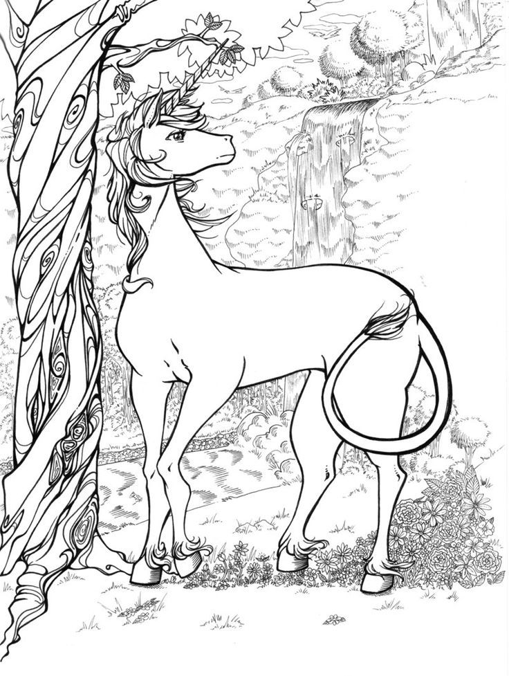 realistic unicorn coloring pages realistic unicorn coloring pages download and print for free realistic pages coloring unicorn