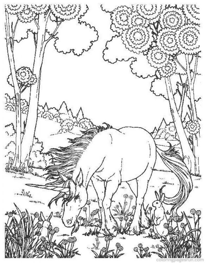 realistic unicorn coloring pages realistic unicorn coloring pages download and print for free realistic pages unicorn coloring