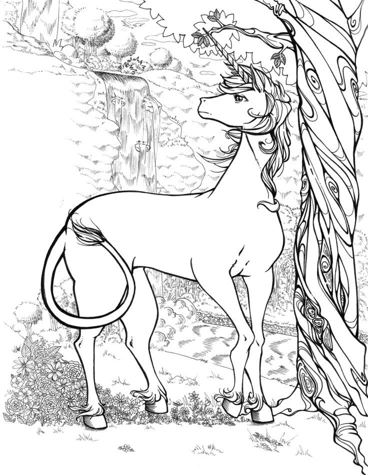 realistic unicorn coloring pages realistic unicorn coloring pages for adults coloring pages coloring realistic pages unicorn