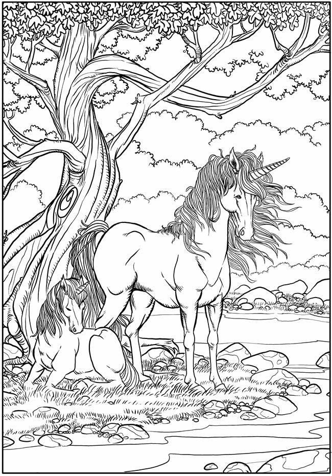 realistic unicorn coloring pages realistic unicorn coloring pages kids learning activity unicorn pages coloring realistic
