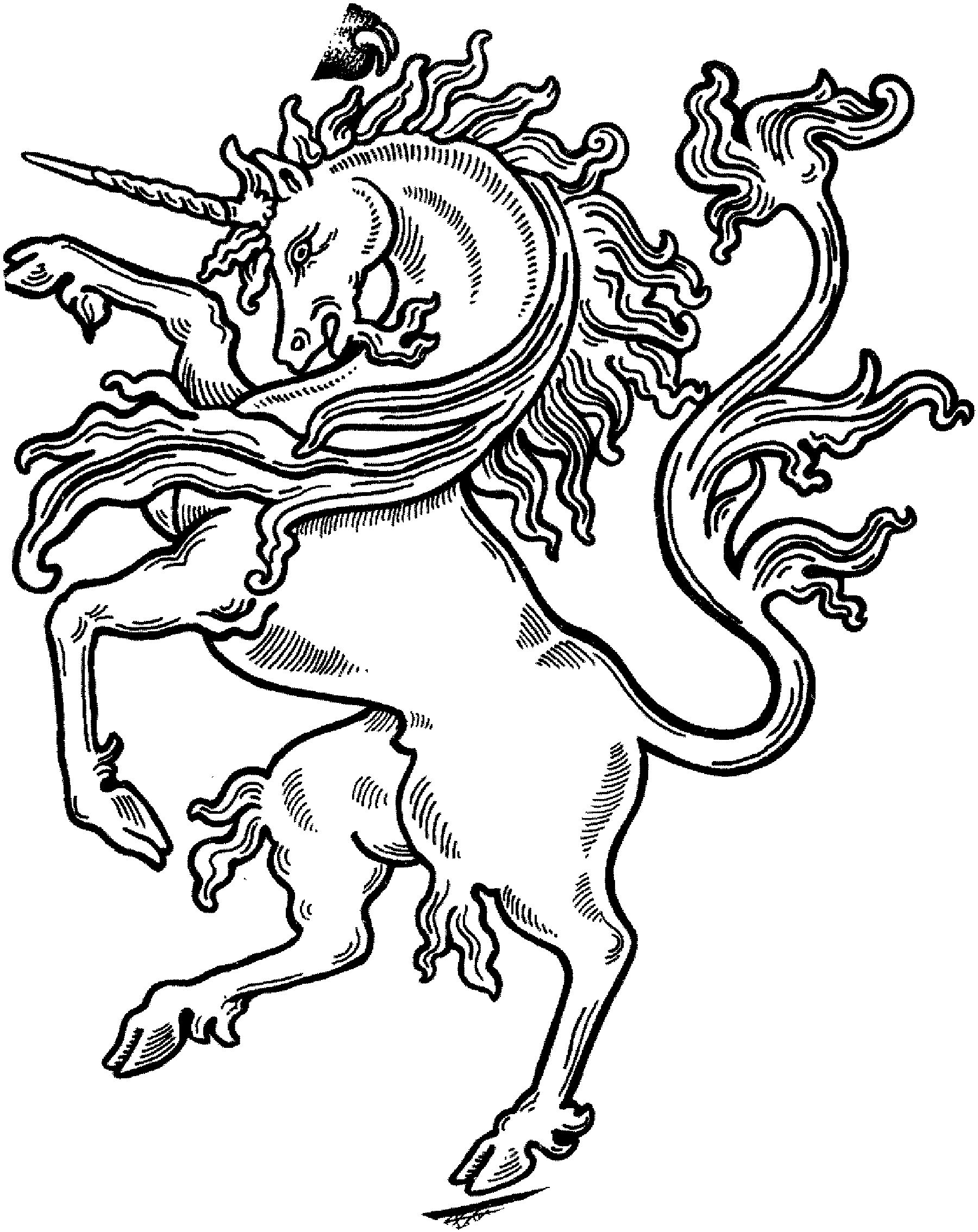 realistic unicorn coloring pages realistic unicorn coloring pages realistic pages coloring unicorn