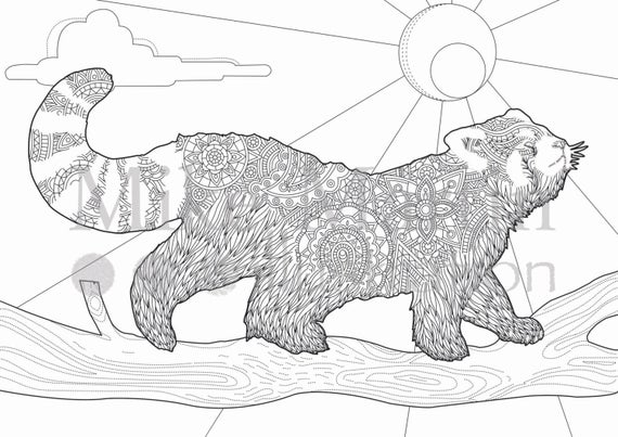 red panda coloring pages cute red panda coloring pages free printable coloring pages coloring red pages panda