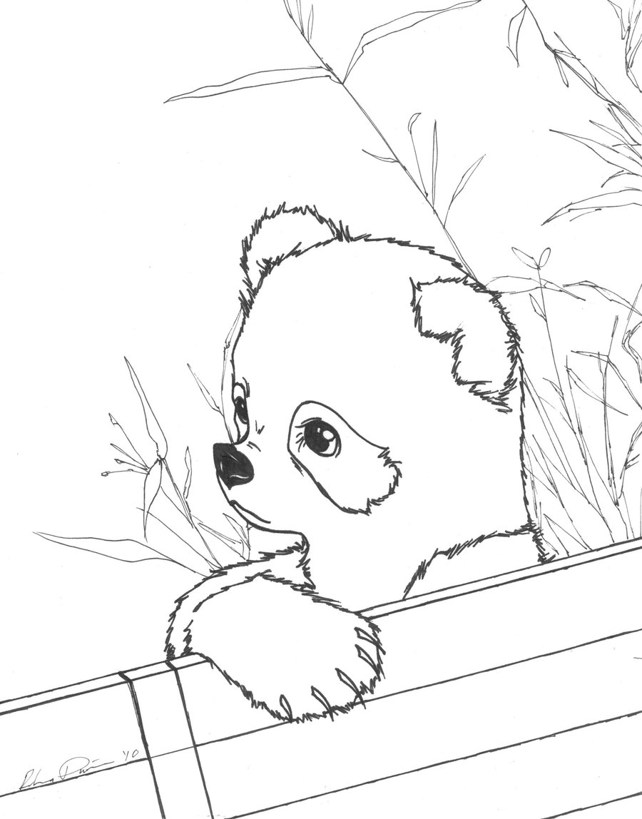 red panda coloring pages printable red panda coloring page instant download adult red panda coloring pages