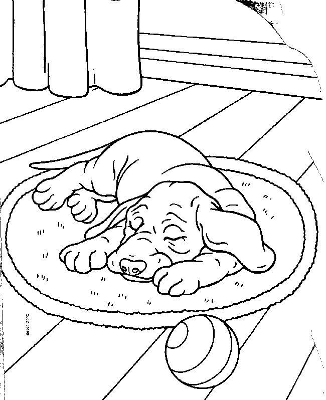 rescue dog coloring pages 500 best images about animal coloring images on pinterest dog coloring pages rescue