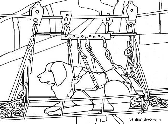 rescue dog coloring pages 9 11 drawing at getdrawings free download pages dog coloring rescue