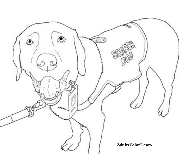 rescue dog coloring pages fbi coloring pages at getdrawings free download coloring pages dog rescue