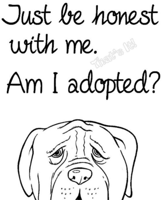 rescue dog coloring pages shelter dog art print animal shelter rescue dog pet dog coloring rescue pages