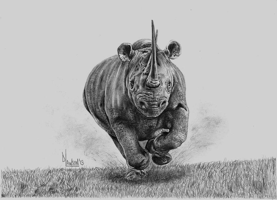 rhino drawings rhinoceros sketch drawing by mike jory rhino drawings