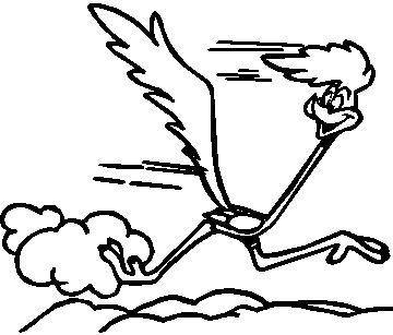 roadrunner outline learn how to draw road runner from looney tunes looney outline roadrunner