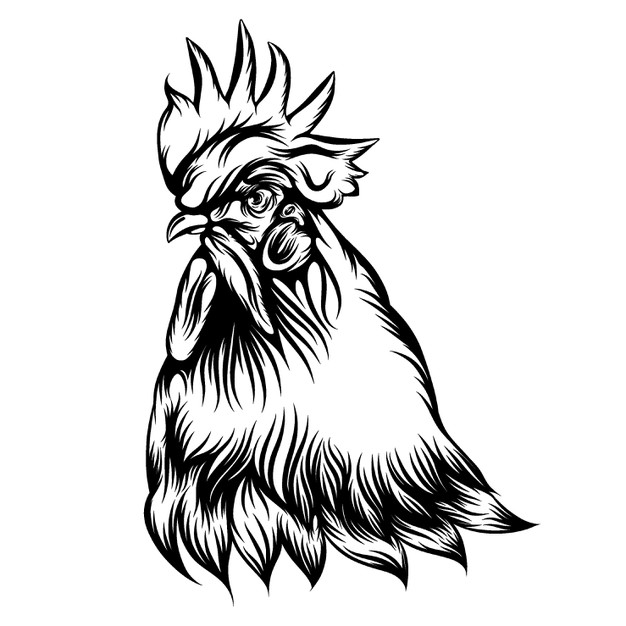 rooster outline premium vector the tattoo illustration of the rooster outline rooster