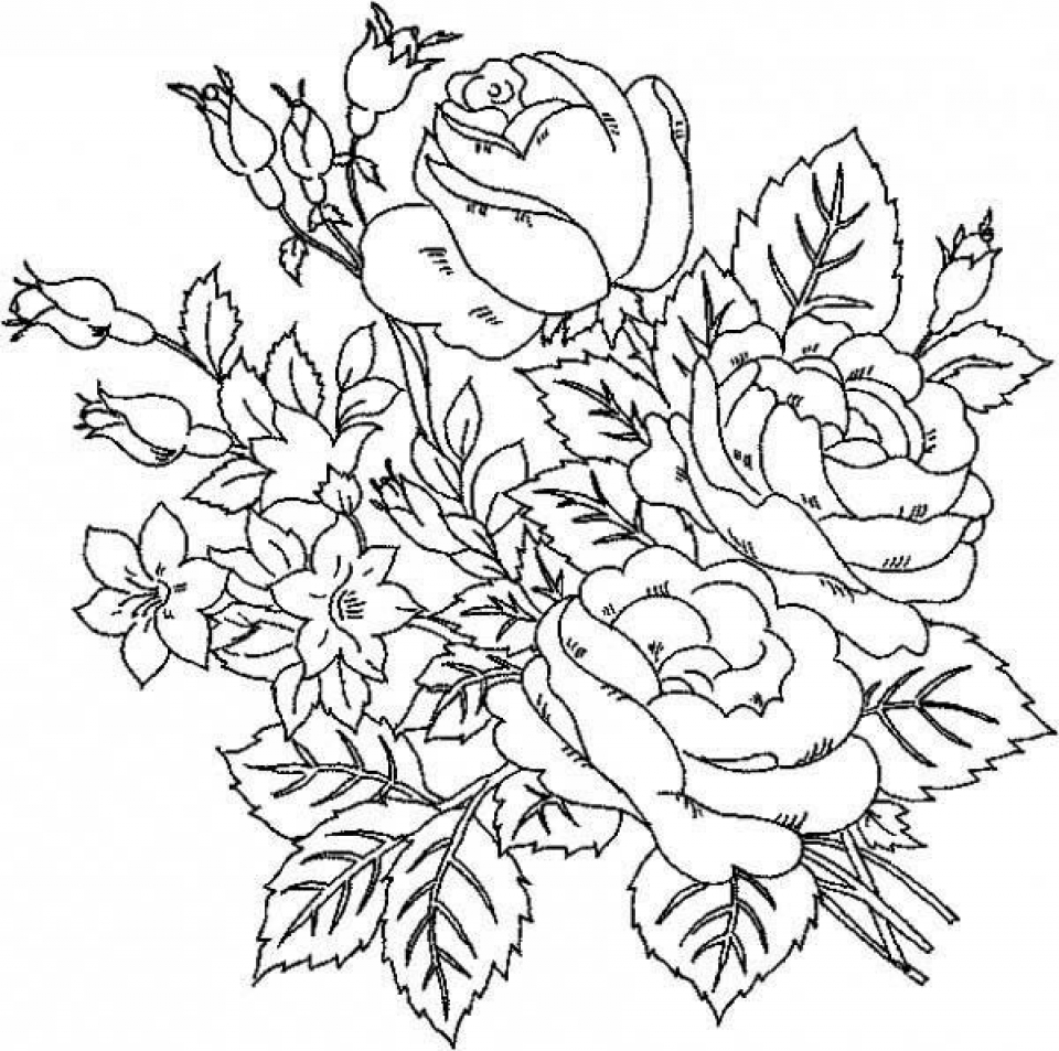 rose color sheets free printable roses coloring pages for kids sheets rose color 1 4