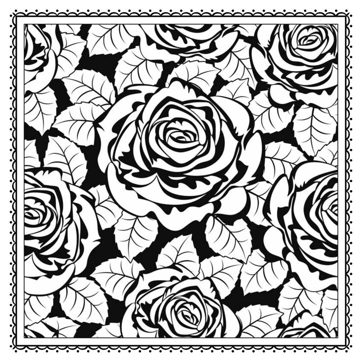 rose garden coloring page 23 best images about bw patterns on pinterest gardens coloring garden rose page