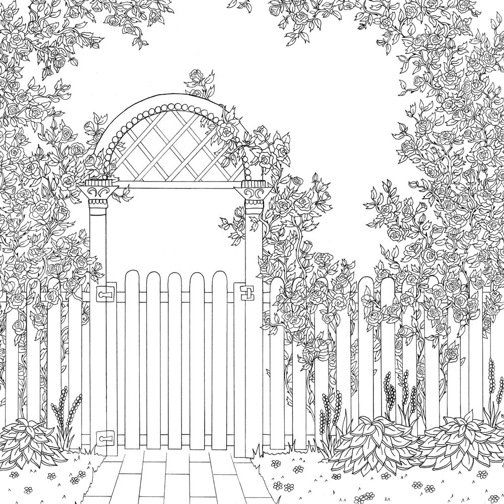 rose garden coloring page rose garden adult coloring page instant download coloring rose garden page