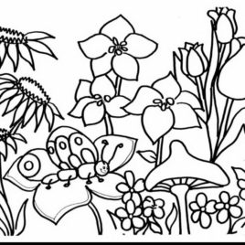 rose garden coloring page rose garden drawing at getdrawings free download coloring garden page rose