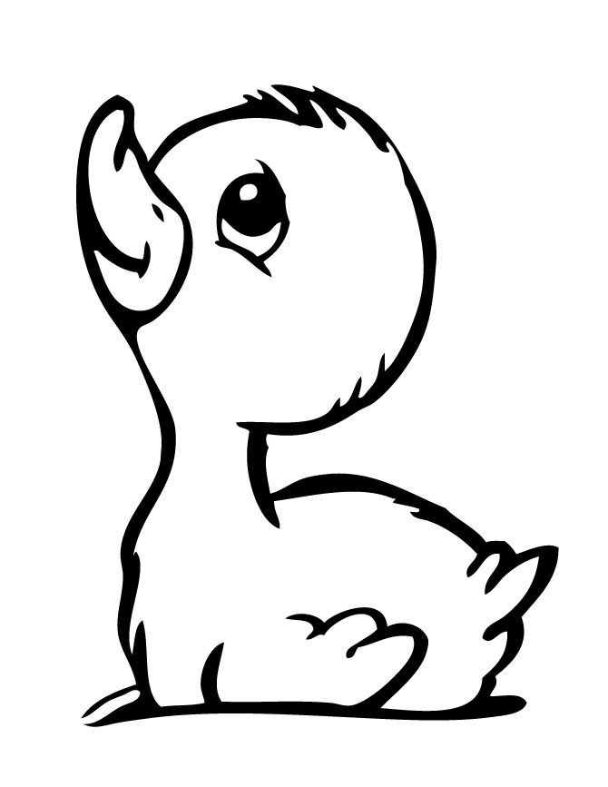 rubber ducky coloring page dulemba coloring page tuesday soapy rubber duckie rubber page coloring ducky