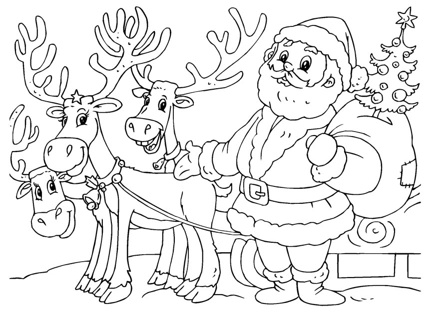 santa and reindeer coloring pages free printable reindeer coloring pages for kids santa reindeer and pages coloring