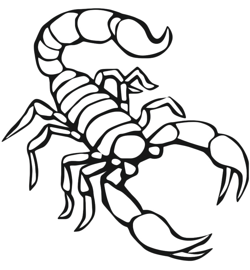 scorpion coloring free printable scorpion coloring pages for kids coloring scorpion