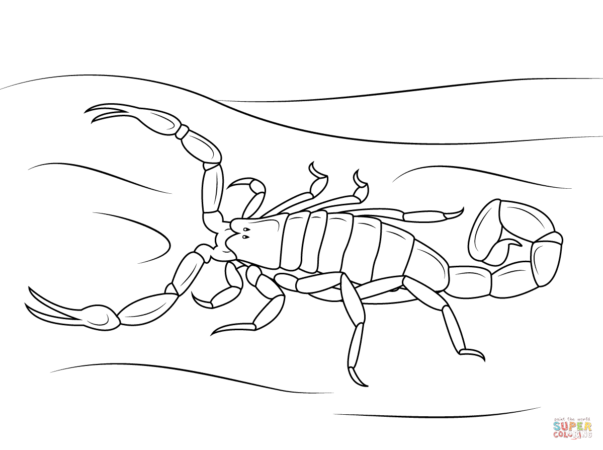 scorpion coloring scorpion coloring pages to download and print for free scorpion coloring