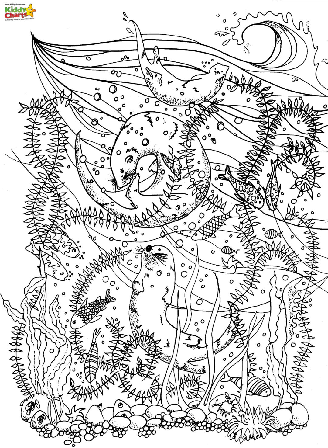 sea dragon coloring pages sea dragon coloring pages at getdrawings free download pages coloring sea dragon