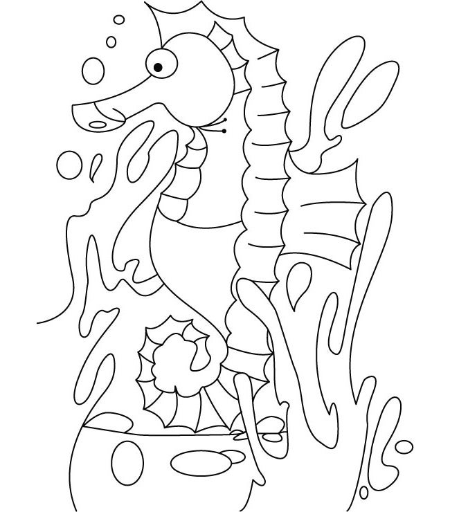 sea horse coloring page cute cartoon seahorse animal ocean coloring page page coloring sea horse
