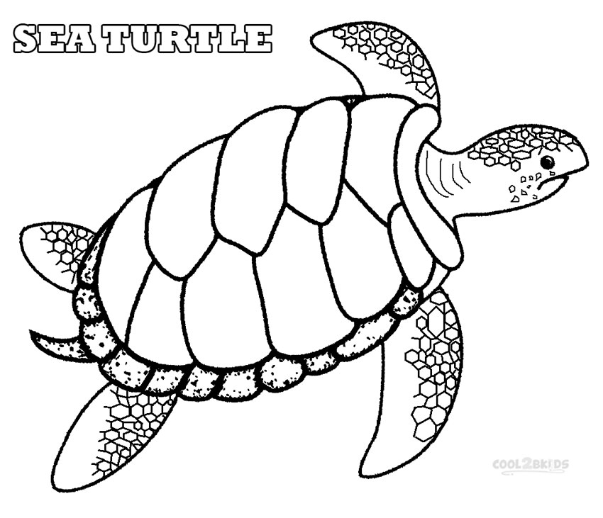 sea turtle coloring pages free printable sea turtle coloring pages for kids sea pages coloring turtle