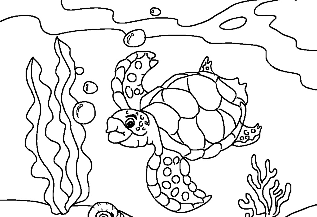 sea turtle coloring pages sea turtle drawing at getdrawings free download coloring pages sea turtle