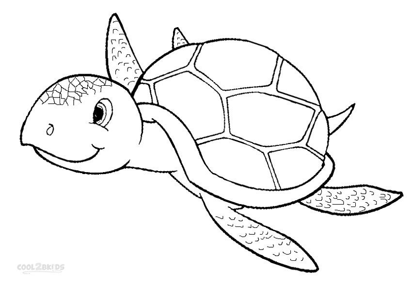 sea turtle for coloring printable sea turtle coloring pages for kids cool2bkids coloring sea turtle for