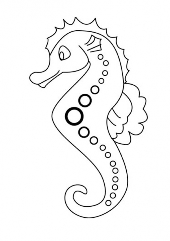 seahorse color sheet kids printable seahorse coloring page the graphics fairy sheet seahorse color