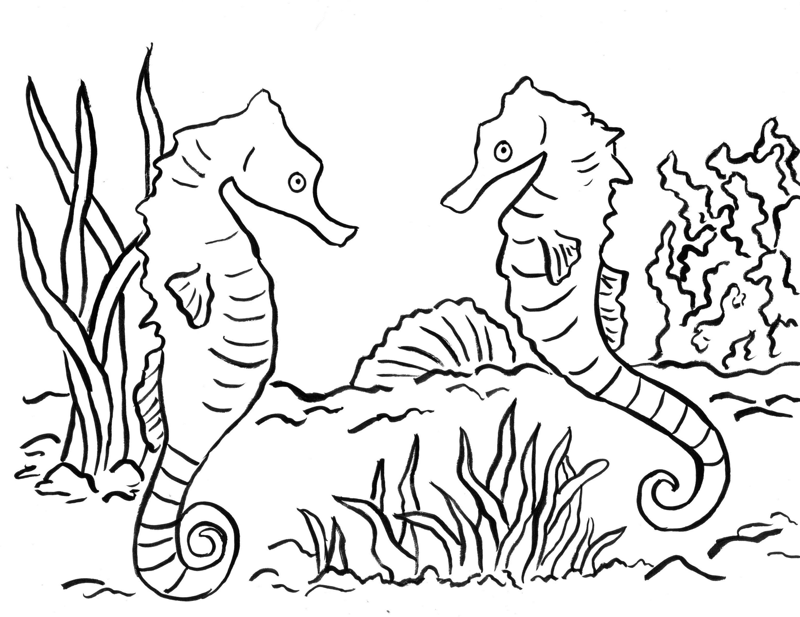 seahorse coloring page seahorse coloring pages getcoloringpagescom page coloring seahorse
