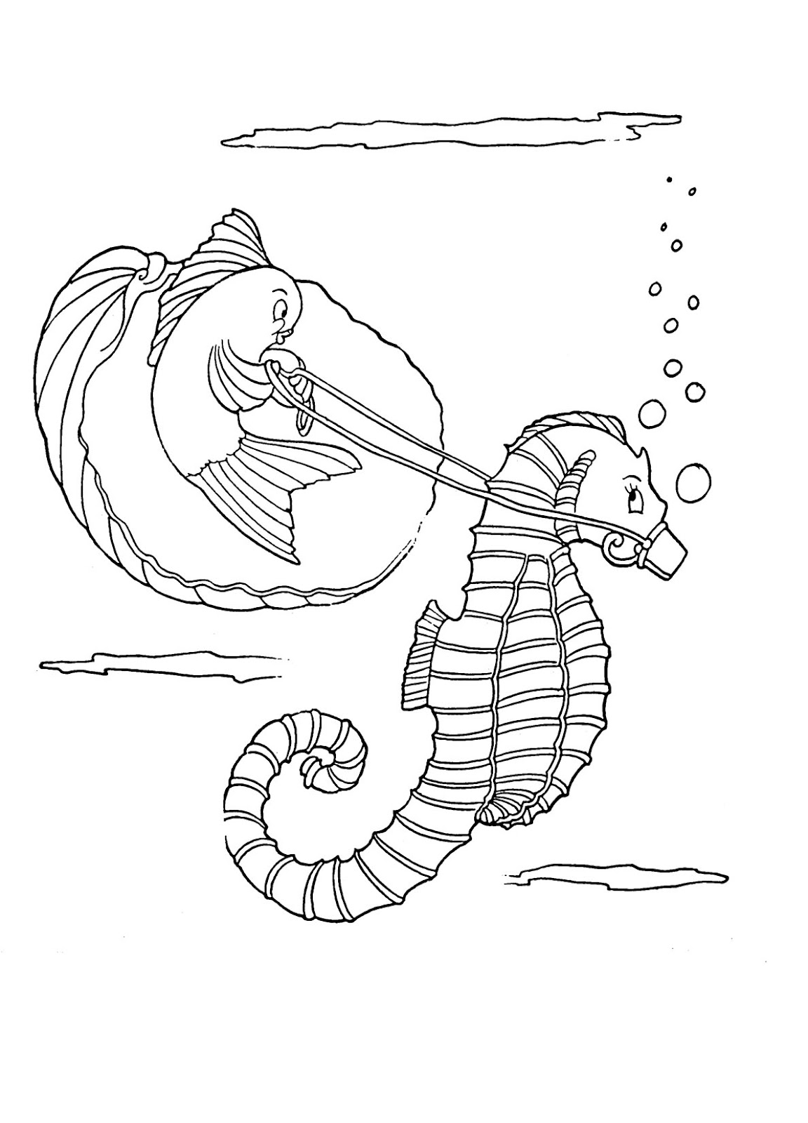 seahorse images for coloring printable seahorse coloring pages for kids cool2bkids coloring for seahorse images