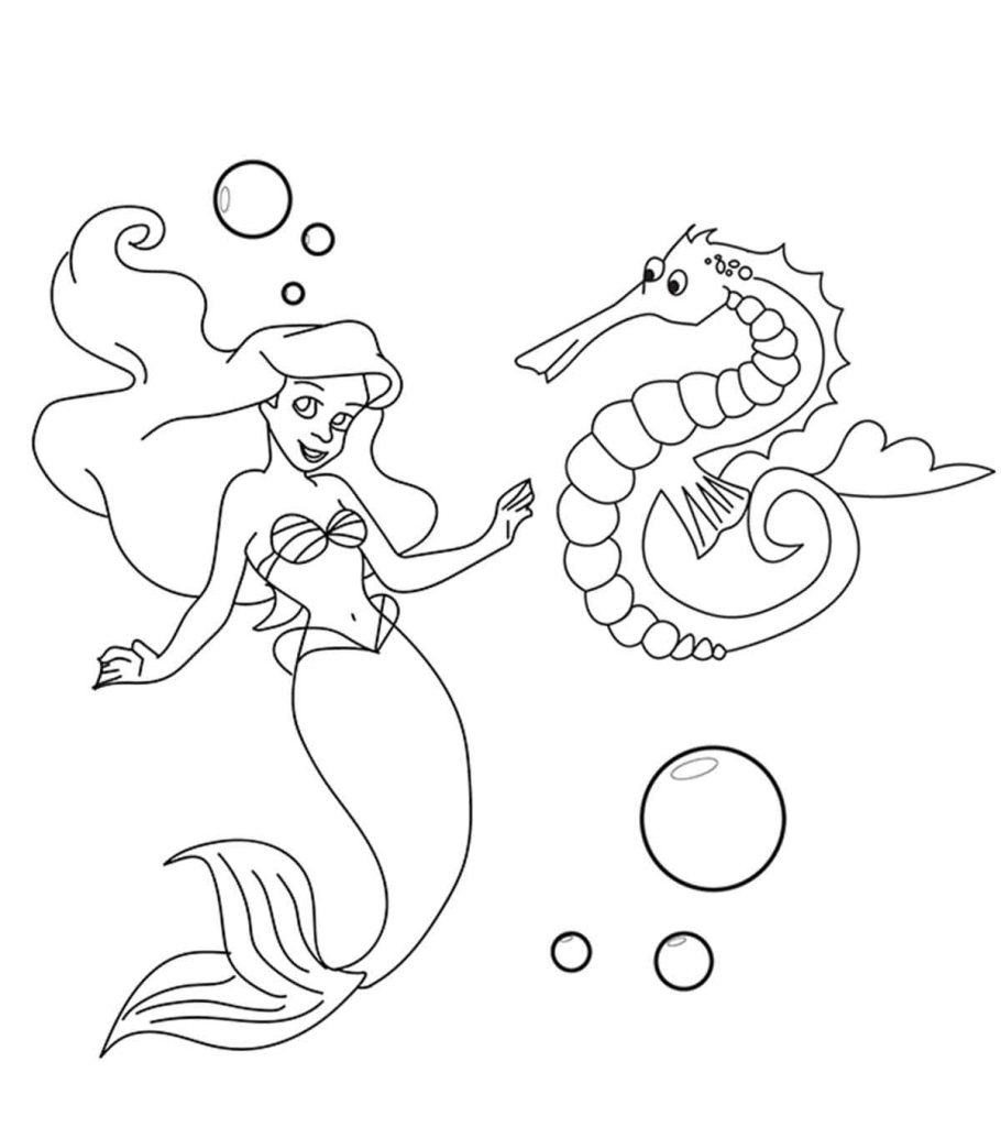 seahorse images for coloring seahorse coloring page free clip art seahorse for images coloring