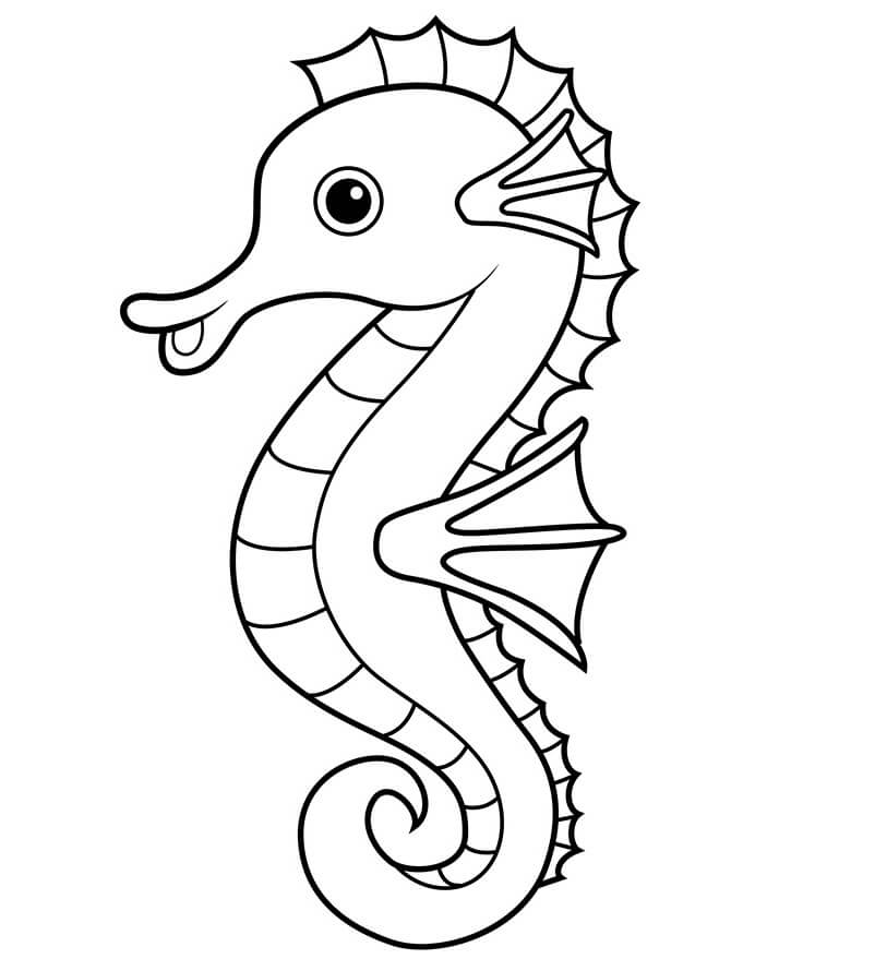 seahorse images for coloring seahorse coloring page google search butterfly coloring images seahorse for