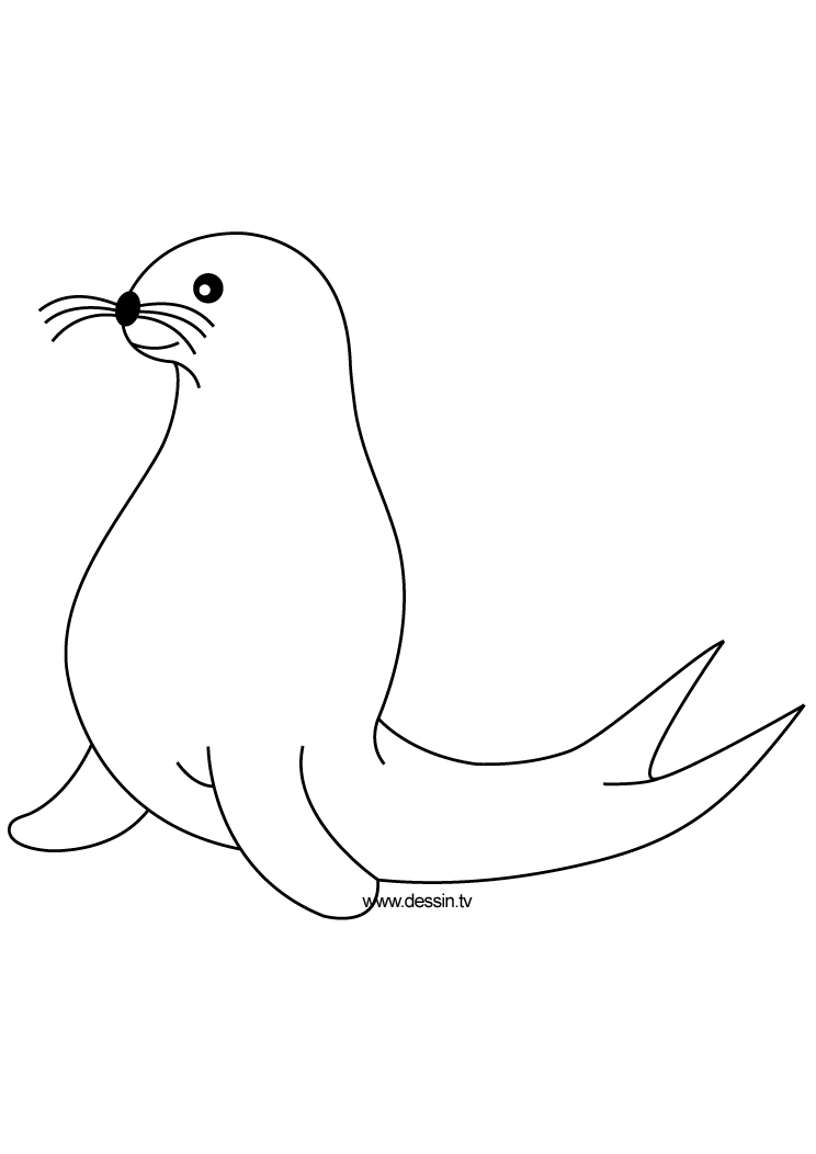 seal coloring page seal coloring pages download and print for free page seal coloring