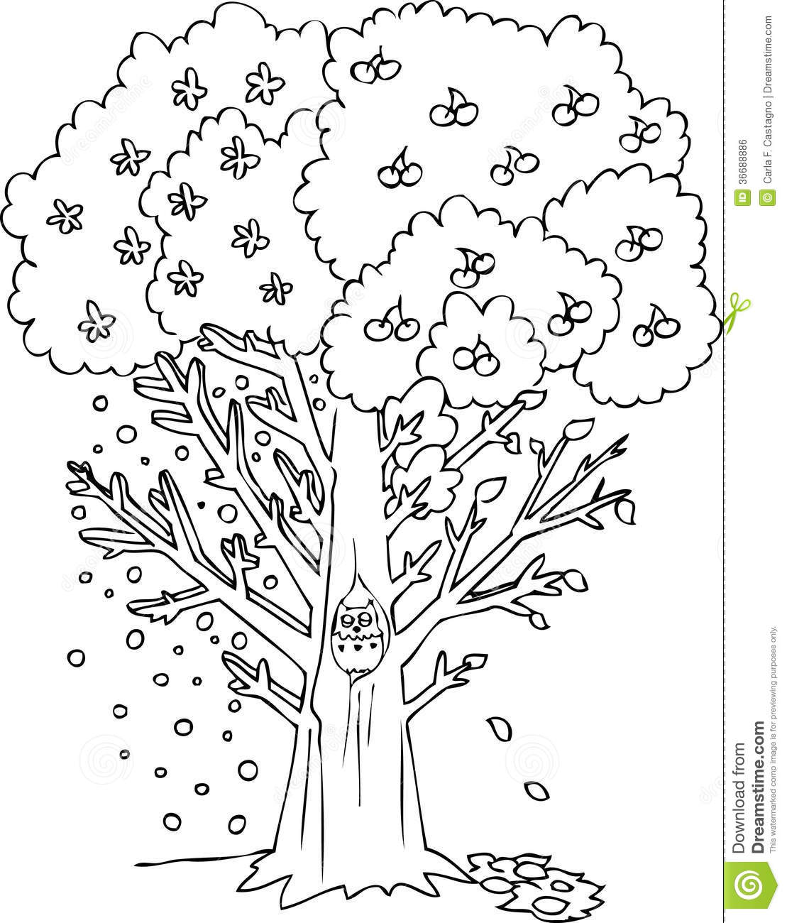 seasons coloring pages 5 best images of of an apple tree seasons printable pages seasons coloring