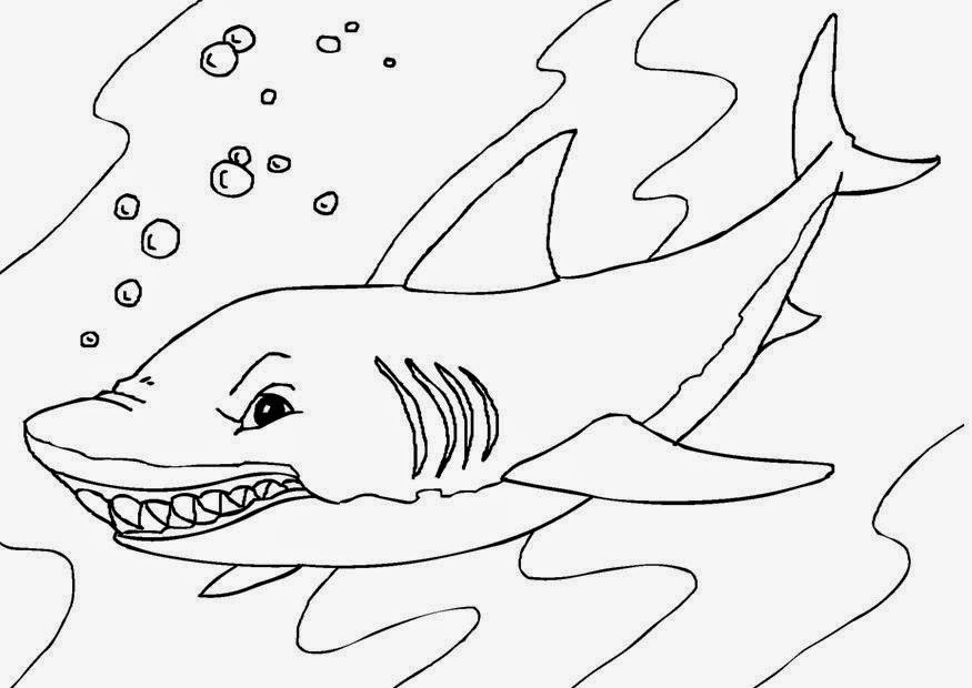 shark colour in free printable shark coloring pages for kids colour in shark 1 1