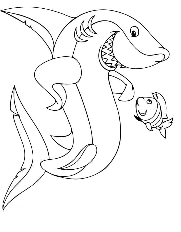 shark colour in shark coloring pages shark colour in