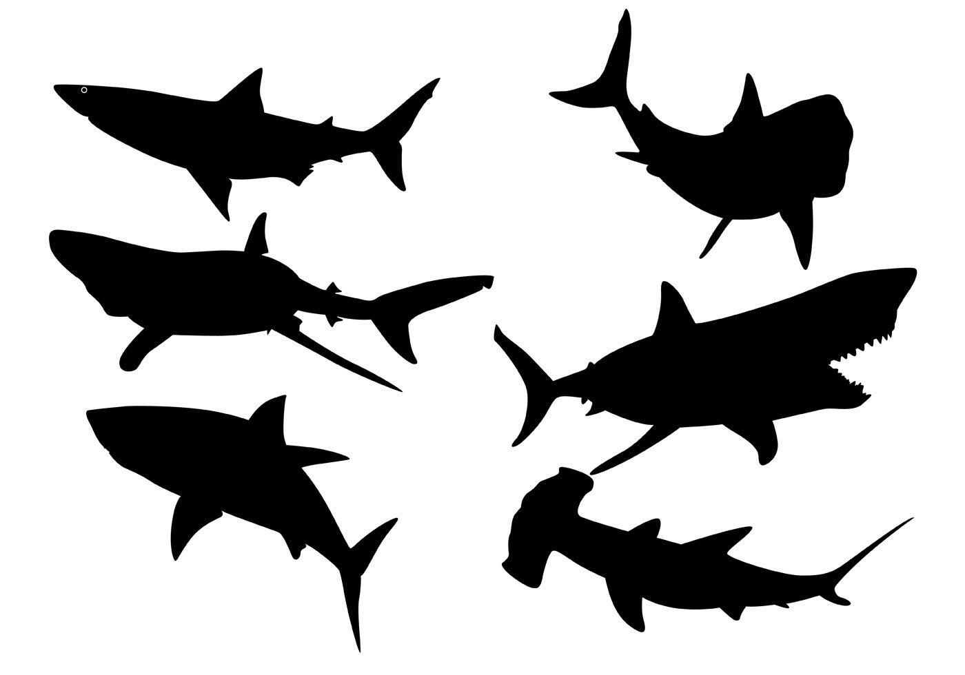 shark silouette great white shark silhouette graphic by idrawsilhouettes silouette shark