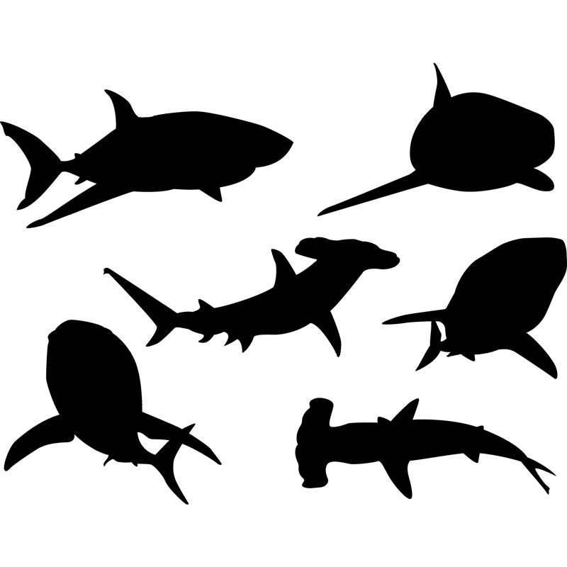 shark silouette shark silhouette solid color outlines of the body of the silouette shark