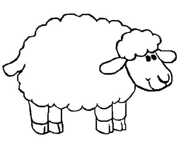 sheep for coloring face sheep coloring pages print coloring 2019 sheep for coloring