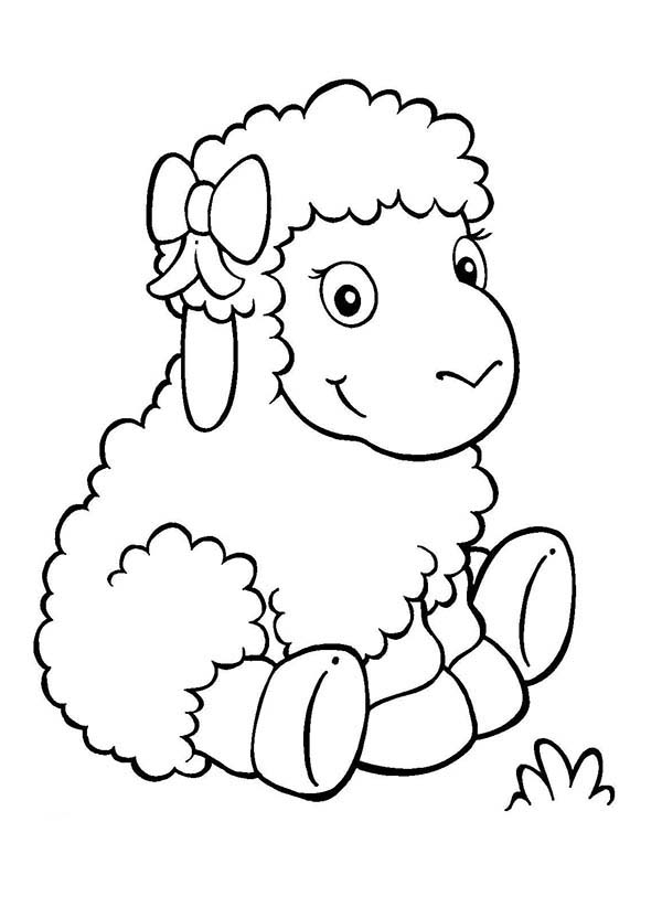 sheep for coloring sheep coloring pages coloring for sheep