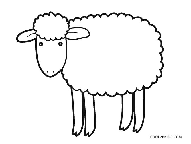sheep for coloring sheep drawings for kids free download on clipartmag for sheep coloring