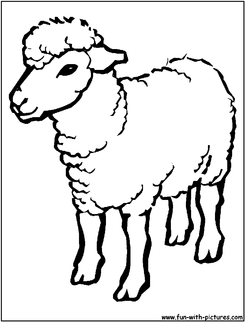 sheep head coloring page shaun the sheep drawing free download on clipartmag page coloring head sheep