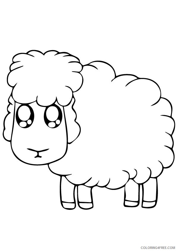 sheep head coloring page sheep outline free download on clipartmag coloring head sheep page
